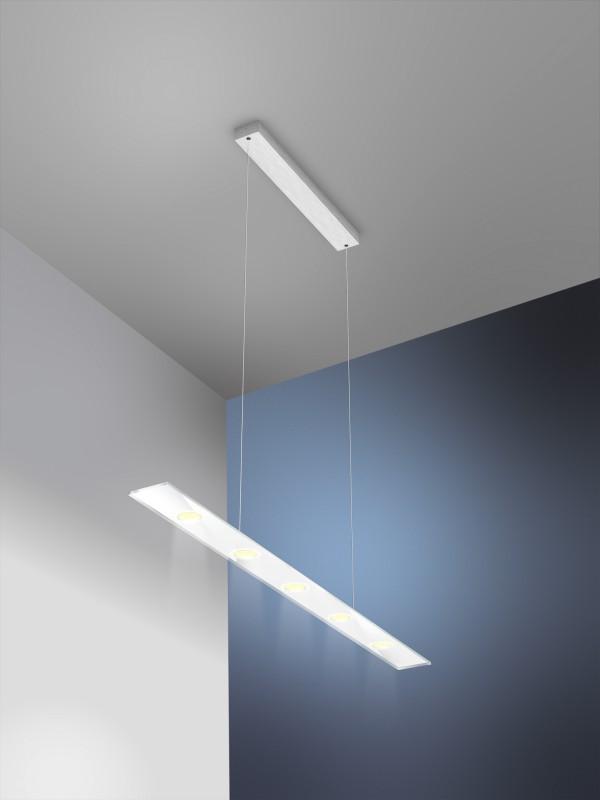 led pendelleuchte sun 5x6w edelstahl glas weiss evotec. Black Bedroom Furniture Sets. Home Design Ideas